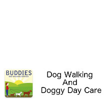 Buddies Dog Walking And Doggy Day Care