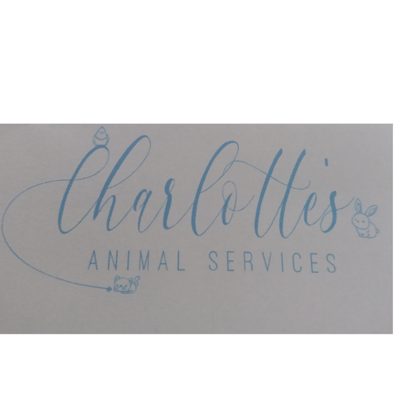 Charlotte's Animal Services